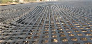 Lưới địa kỹ thuật Polyester cường lực cao
