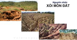 Nguyên nhân xói mòn đất