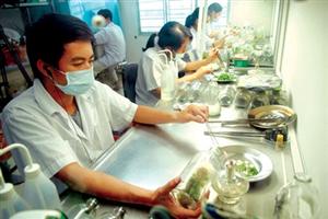 Người Việt ở nước ngoài tham gia các cuộc đàm phán kinh tế