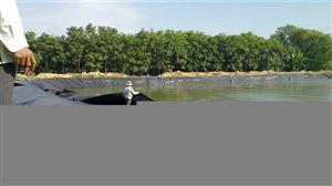 Màng chống thấm HDPE | Ứng dụng trong xử lý nước