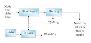 Cách tính toán làm hầm Biogas