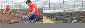 Ứng dụng bạt địa trong Nông nghiệp