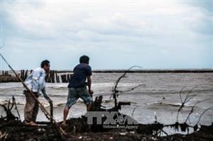 Cà Mau đề xuất ưu tiên tài trợ cho các dự án biến đổi khí hậu