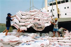 Xuất khẩu gạo của Việt Nam giảm trong Q1