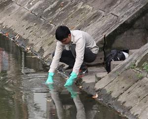 Nước bị ô nhiễm làm chết cá ở sông Thái Bình