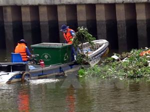 Mưa không bình thường đổ lỗi cho các ca tử vong cá chết ở kênh Nhiêu Lộc - Nghệ An