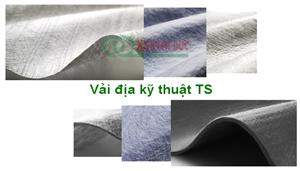 Các loại vải địa kỹ thuật TS